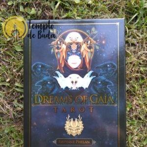 Tarot Sonhos de Gaia de Ravynne Phelan em Inglês